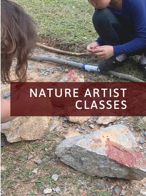 Nature Artist Weekly Class